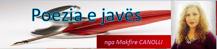 Logo Poezia e javes fb