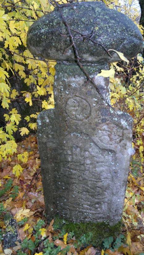 Varrezë1.1 ne Fshatin Tupallë _Medvegje